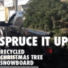 Every Third Thursday: Spruce It Up