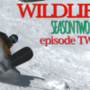 WILDLIFE Season 2 – Episode TWO