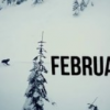 Stevens Pass Monthtage – February